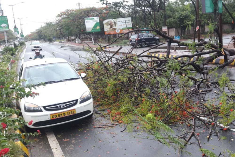 Odisha Fani Cyclone 2019